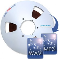16 Track Reel-to-Reel to WAV/MP3 (1/2inch tape)